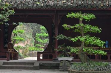 ChiSchagen-China2012